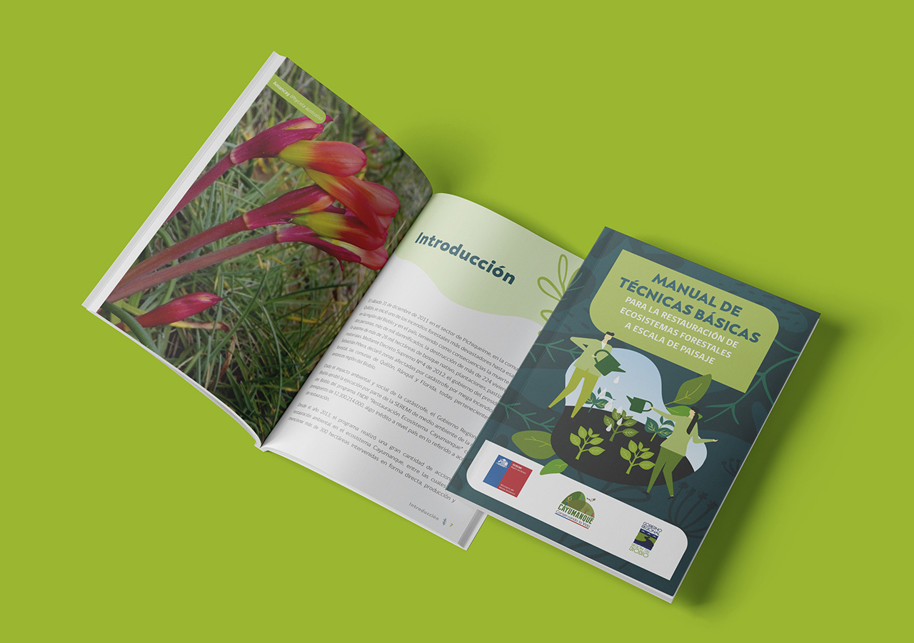 Manual de Técnicas Básicas para la restauración de Ecosistemas a escala de paisaje – Proyecto Cayumanque